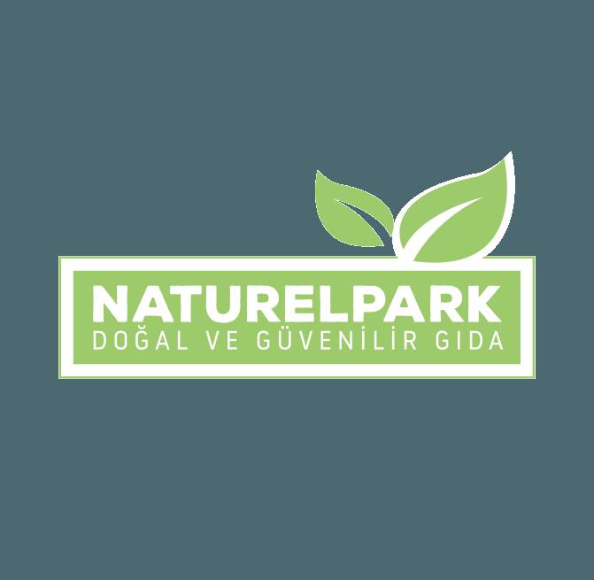 logo ve web sitesi tasarımı